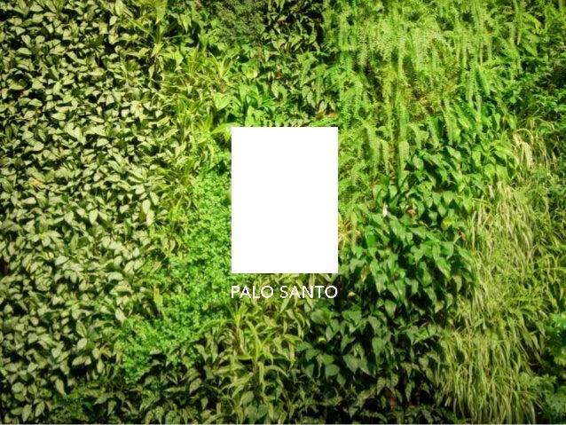 PALO SANTO  Primer hotel urbano sustentable de Latinoamérica  Boutique de Diseño  24 habitaciones  Rooftop pool, Restauran...