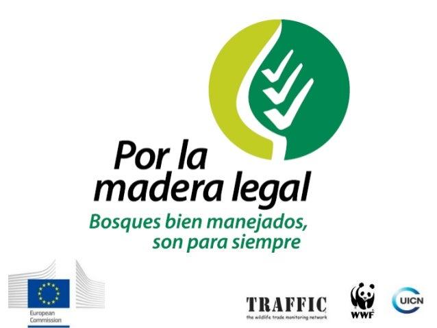 """Proyecto """"Apoyando el Plan de Acción FLEGT de la Unión Europea en América del Sur"""" Nhaydú Bohórquez Teddi Peñaherrera TRAF..."""