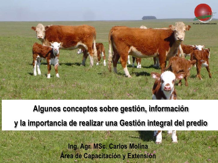 Algunos conceptos sobre gestión, información y la importancia de realizar una Gestión integral del predio                 ...