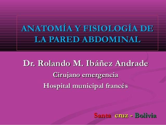 ANATOMÍA Y FISIOLOGÍA DEANATOMÍA Y FISIOLOGÍA DE LA PARED ABDOMINALLA PARED ABDOMINAL Dr. Rolando M. Ibáñez AndradeDr. Rol...