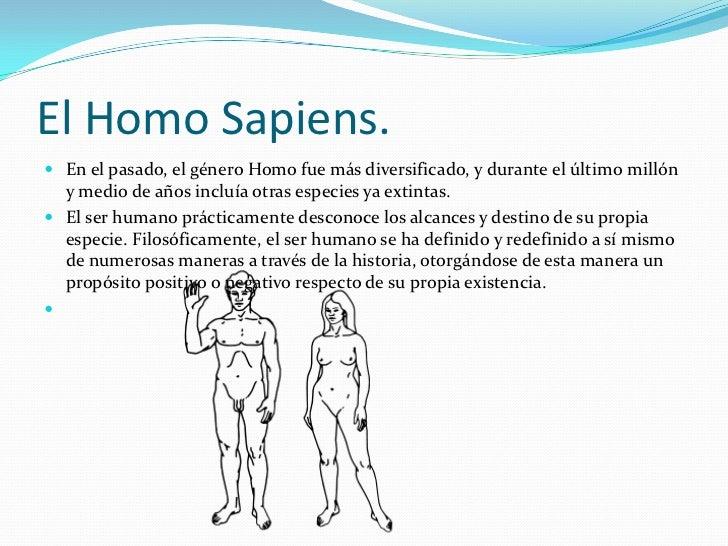 El Homo Sapiens.<br />En el pasado, el género Homo fue más diversificado, y durante el último millón y medio de años inclu...