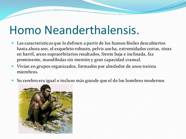 Homo Neanderthalensis.<br />Las características que lo definen a partir de los huesos fósiles descubiertos hasta ahora son...