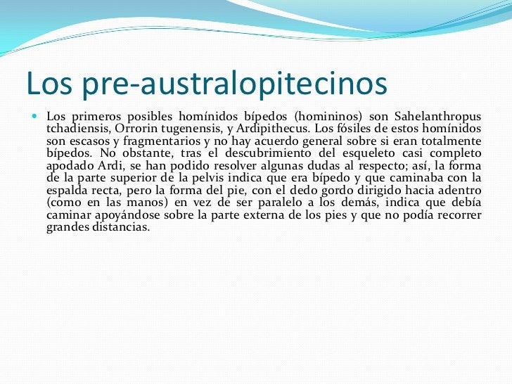Los pre-australopitecinos <br />Los primeros posibles homínidos bípedos (homininos) son Sahelanthropus tchadiensis, Orrori...