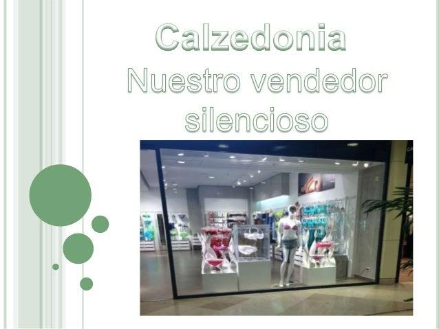 Calzedonia nació en 1987 en Verona con la idea de crear un negocio de venta de medias, pantis , calcetines y ropa de baño ...