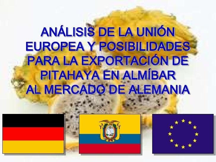 ANÁLISIS DE LA UNIÓN EUROPEA Y POSIBILIDADES PARA LA EXPORTACIÓN DE PITAHAYA EN ALMÍBAR AL MERCADO DE ALEMANIA<br />