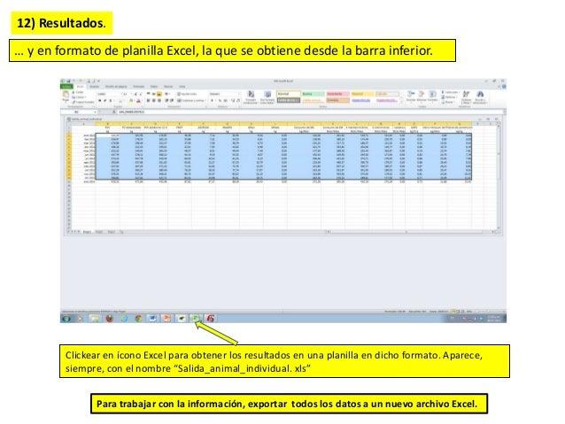 12) Resultados. … y en formato de planilla Excel, la que se obtiene desde la barra inferior. Clickear en ícono Excel para ...