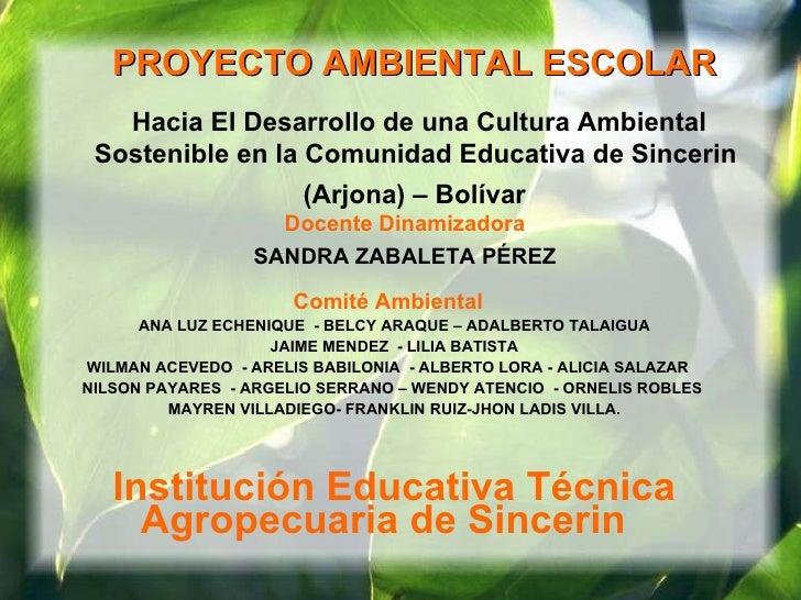 PROYECTO AMBIENTAL ESCOLAR   Hacia El Desarrollo de una Cultura Ambiental Sostenible en la Comunidad Educativa de Sincerin...