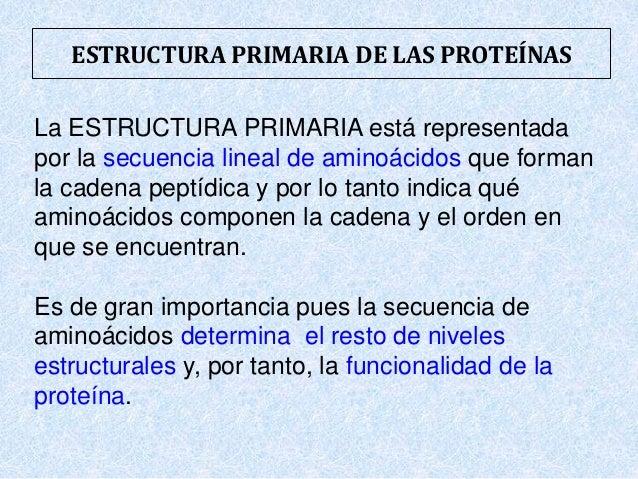 Presentacion Proteinas