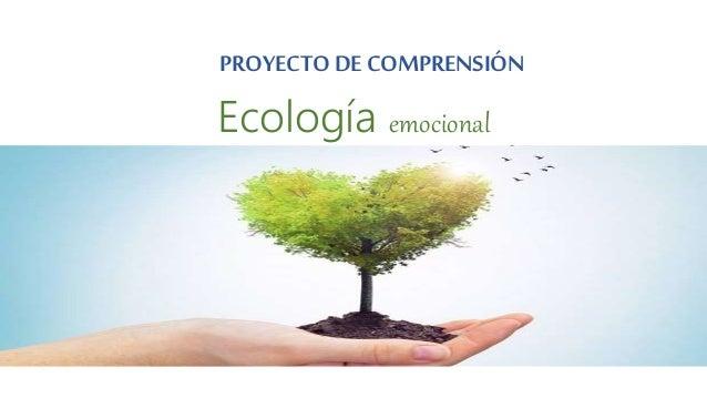 PROYECTO DE COMPRENSIÓN Ecología emocional
