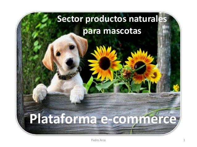 Sector productos naturales         para mascotasPlataforma e-commerce           Pedro Arce           1