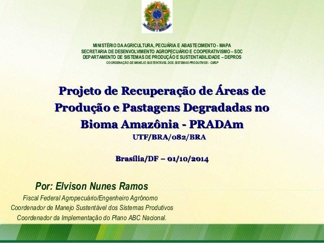 MINISTÉRIO DA AGRICULTURA, PECUÁRIA E ABASTECIMENTO - MAPA SECRETARIA DE DESENVOLVIMENTO AGROPECUÁRIO E COOPERATIVISMO – S...