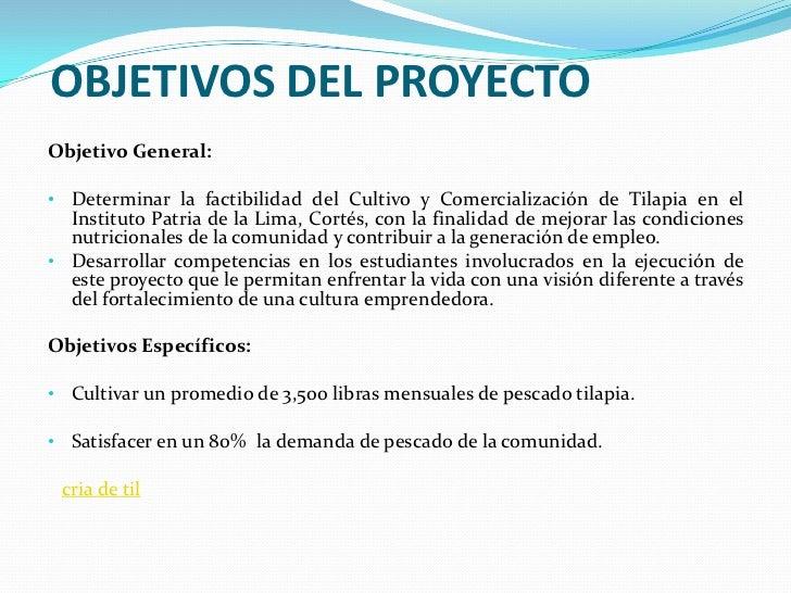 Presentaci n proyecto tilapia for Construccion de estanques para tilapia