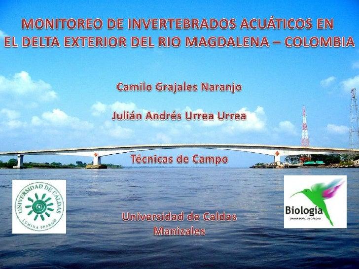 MONITOREO DE INVERTEBRADOS ACUÁTICOS EN <br />EL DELTA EXTERIOR DEL RIO MAGDALENA – COLOMBIA<br />Camilo Grajales Naranjo<...