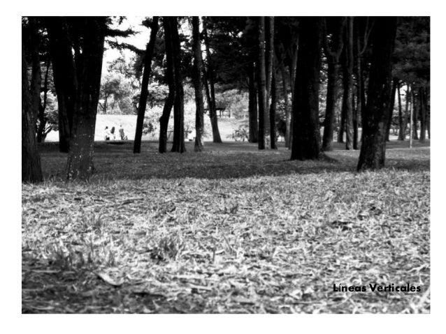 Kandinsky:  Punto y línea sobre plano