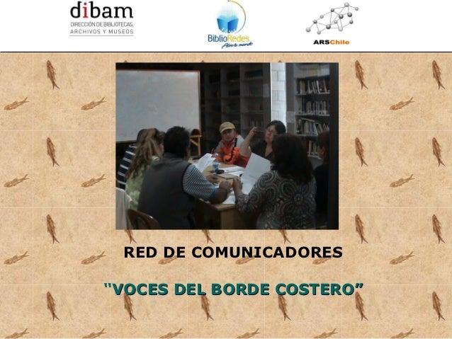 Formación de 14 Redes de Comunicadores en Bibliotecas Públicas              para el Programa BiblioRedes de la DIBAM RED D...