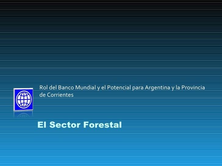 Rol del Banco Mundial y el Potencial para Argentina y la Provincia de Corrientes El Sector Forestal