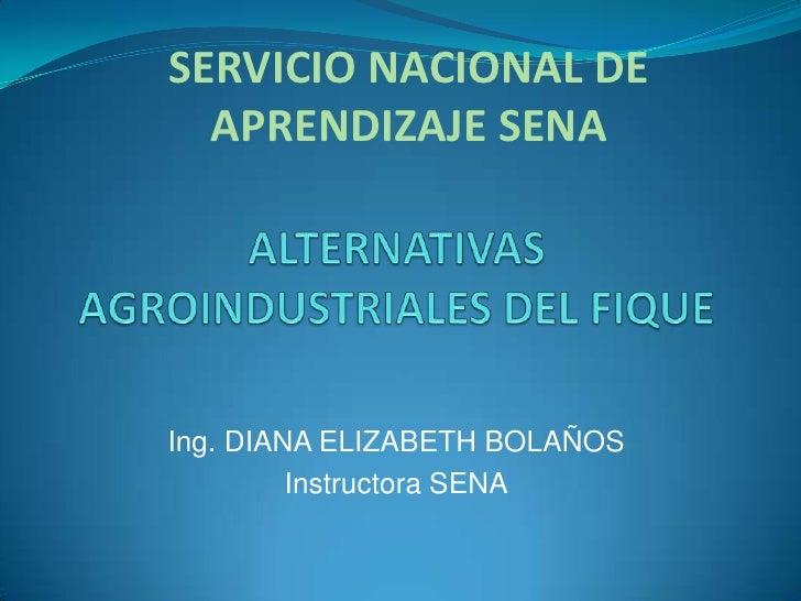 SERVICIO NACIONAL DE APRENDIZAJE SENA<br />ALTERNATIVAS AGROINDUSTRIALES DEL FIQUE<br />Ing. DIANA ELIZABETH BOLAÑOS<br />...