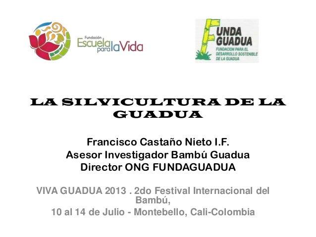 LA SILVICULTURA DE LA GUADUA Francisco Castaño Nieto I.F. Asesor Investigador Bambú Guadua Director ONG FUNDAGUADUA VIVA G...