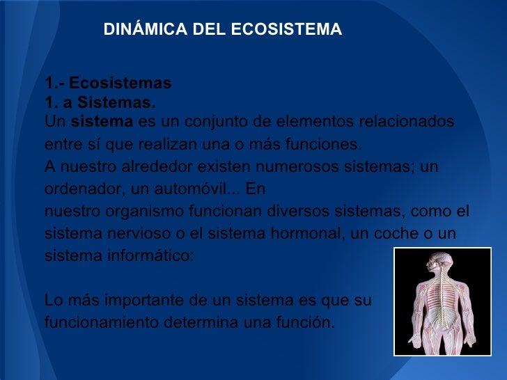 DINÁMICA DEL ECOSISTEMA1.- Ecosistemas1. a Sistemas.Un sistema es un conjunto de elementos relacionadosentre sí que realiz...