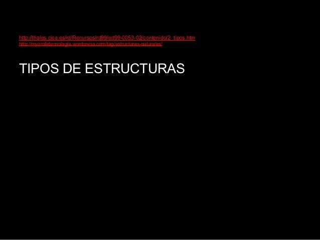http://thales.cica.es/rd/Recursos/rd99/ed99-0053-02/contenido/2_tipos.htmhttp://myprofetecnologia.wordpress.com/tag/estruc...