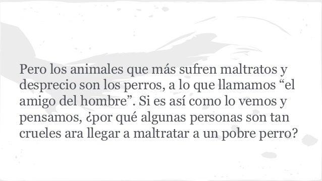 MALTRATO ANIMAL  Slide 3