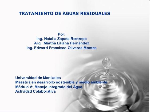 UNIVERSIDAD DE MANIZALES . ESCUELA DE POSTGRADOS. MAESTRIA DE DESARROLLO SOSTENIBLE Y MEDIO AMBIENTE. TRATAMIENTO DE AGUAS...