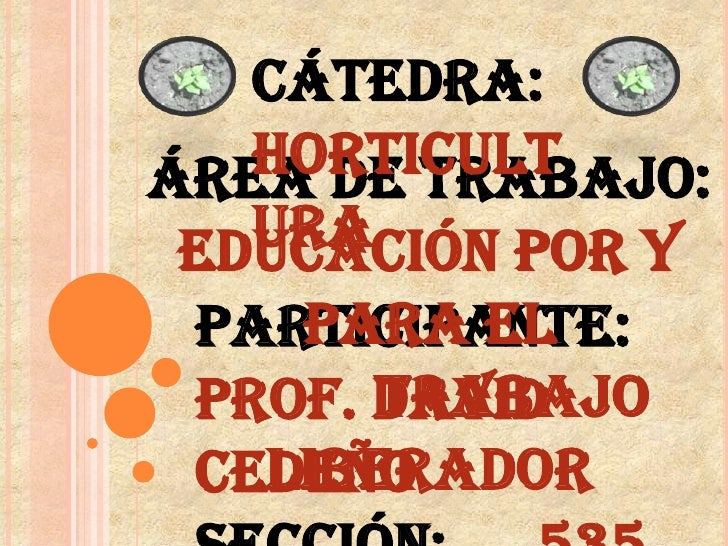 Cátedra: Horticultura<br />Área de trabajo: Educación por y para El <br />Trabajo Liberador<br />Participante: Prof.David ...
