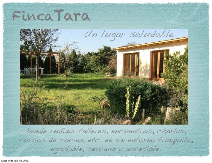FincaTara                                Un lugar saludable                Donde realizar talleres, encuentros, charlas,  ...