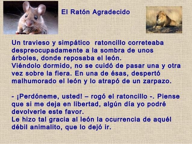 El Ratón Agradecido Un travieso y simpático ratoncillo correteaba despreocupadamente a la sombra de unos árboles, donde re...