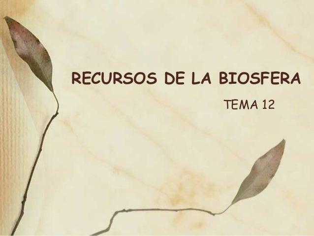RECURSOS DE LA BIOSFERA TEMA 12