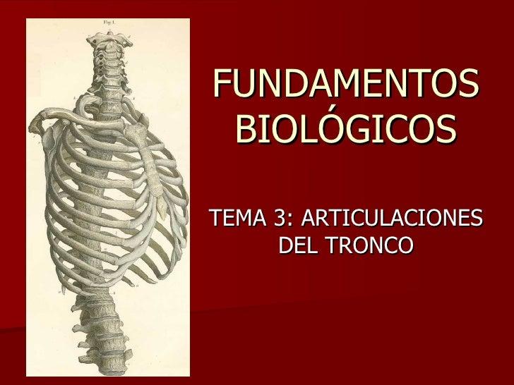 FUNDAMENTOS BIOLÓGICOS TEMA 3: ARTICULACIONES DEL TRONCO