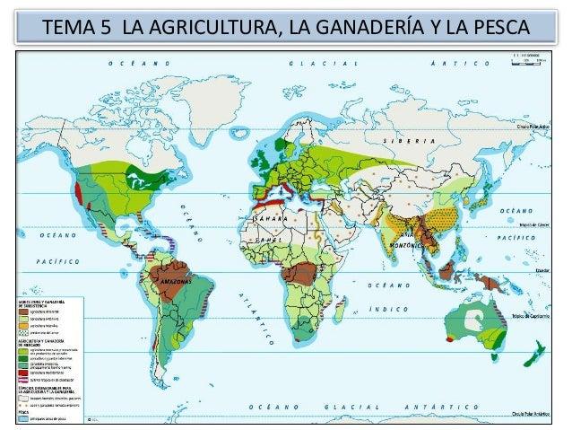 TEMA 5 LA AGRICULTURA, LA GANADERÍA Y LA PESCA
