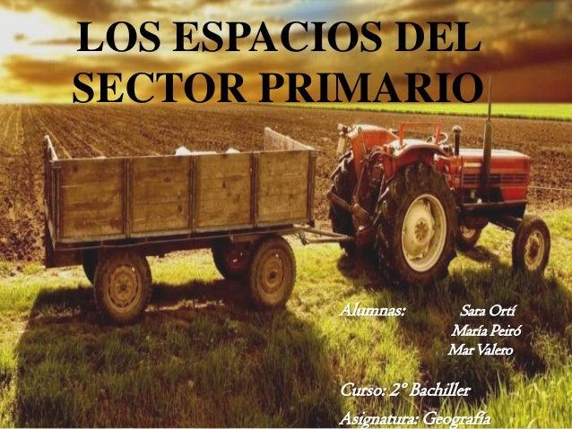 LOS ESPACIOS DEL SECTOR PRIMARIO  Alumnas:  Sara Ortí María Peiró Mar Valero  Curso: 2º Bachiller Asignatura: Geografía