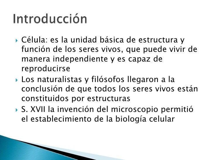 Presentación Teoria Celular