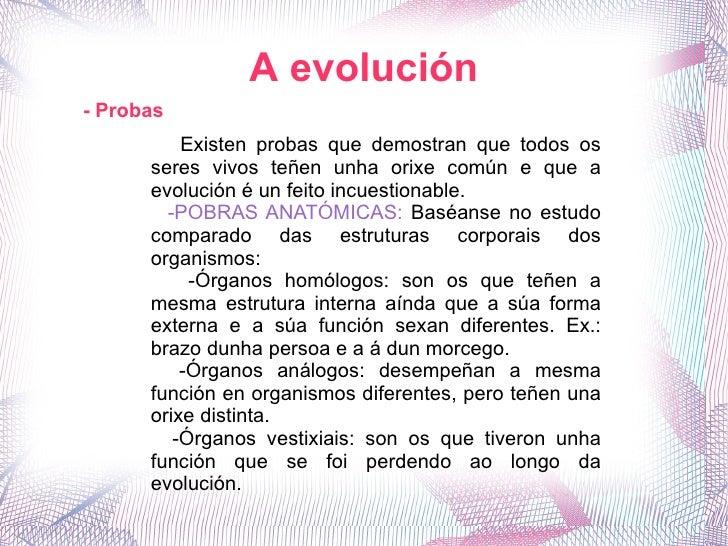 - Probas A evolución Existen probas que demostran que todos os seres vivos teñen unha orixe común e que a evolución é un f...