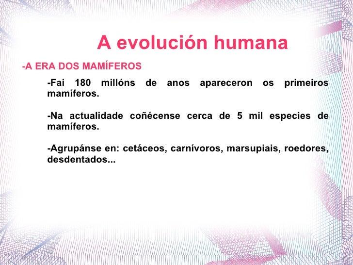 A evolución humana -A ERA DOS MAMÍFEROS -Fai 180 millóns de anos apareceron os primeiros mamíferos. -Na actualidade coñéce...