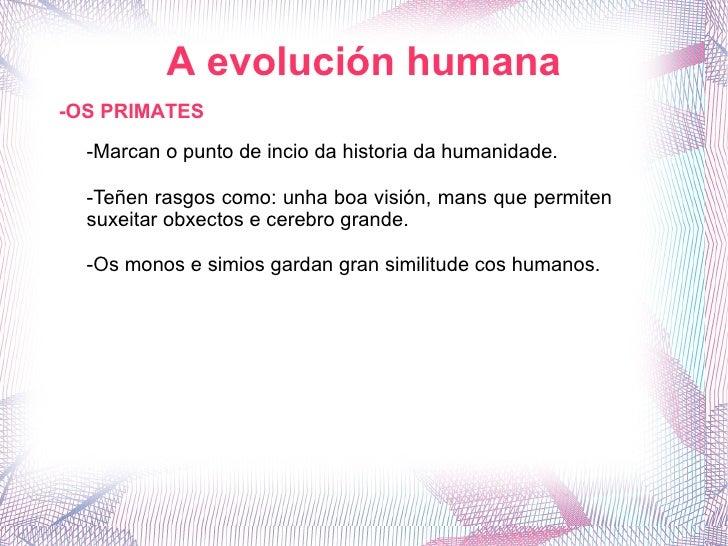 A evolución humana -OS PRIMATES -Marcan o punto de incio da historia da humanidade. -Teñen rasgos como: unha boa visión, m...