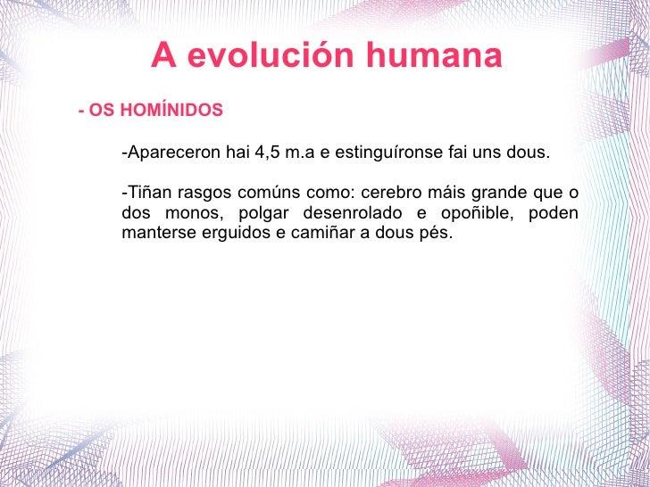 A evolución humana - OS HOMÍNIDOS -Apareceron hai 4,5 m.a e estinguíronse fai uns dous. -Tiñan rasgos comúns como: cerebro...