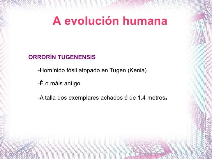 A evolución humana ORRORÍN TUGENENSIS -Homínido fósil atopado en Tugen (Kenia). -É o máis antigo. -A talla dos exemplares ...