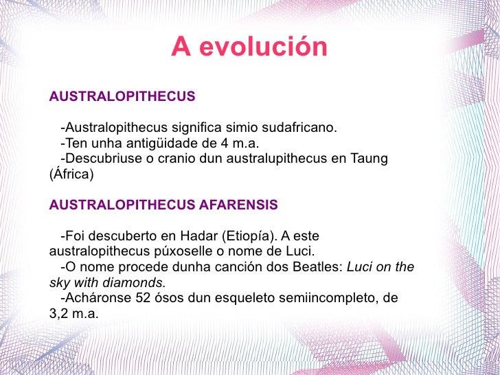 A evolución AUSTRALOPITHECUS -Australopithecus significa simio sudafricano. -Ten unha antigüidade de 4 m.a. -Descubriuse o...
