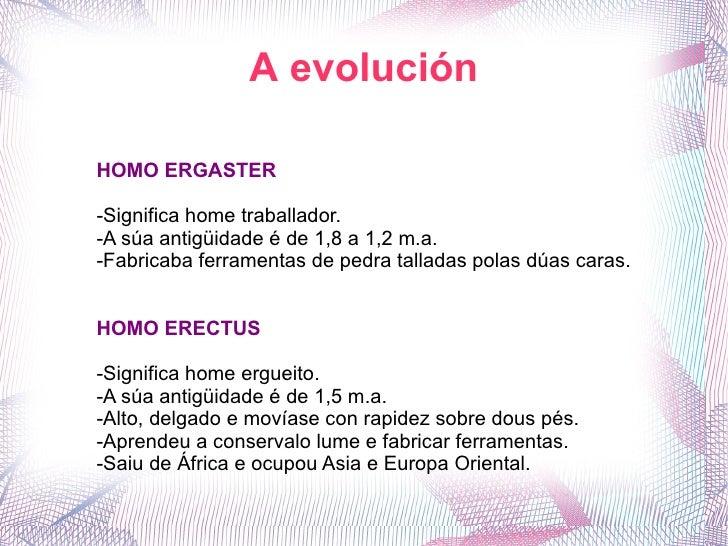 A evolución HOMO ERGASTER -Significa home traballador. -A súa antigüidade é de 1,8 a 1,2 m.a. -Fabricaba ferramentas de pe...