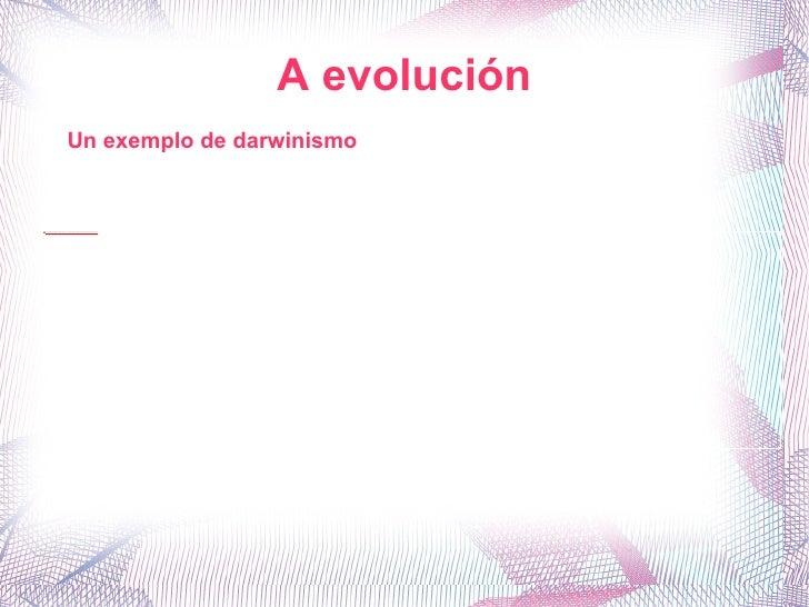 A evolución Un exemplo de darwinismo
