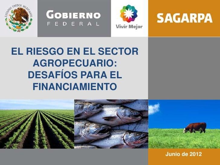 EL RIESGO EN EL SECTOR    AGROPECUARIO:   DESAFÍOS PARA EL    FINANCIAMIENTO                         Junio de 2012