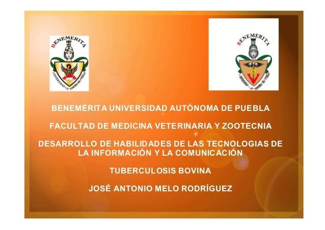 BENEMÉRITA UNIVERSIDAD AUTÓNOMA DE PUEBLA FACULTAD DE MEDICINA VETERINARIA Y ZOOTECNIA DESARROLLO DE HABILIDADES DE LAS TE...