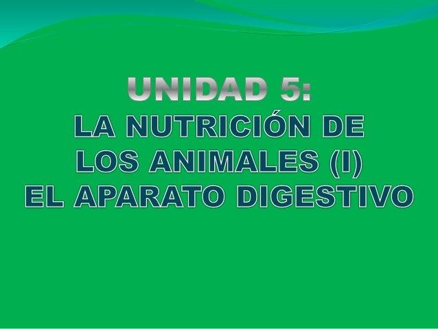 SER VIVO EXTERIOR MATERIA Y ENERGÍA Toma de alimentos del exterior = ALIMENTACIÓN + transformación y utilización de sustan...