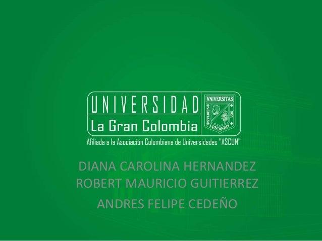 DIANA CAROLINA HERNANDEZ  ROBERT MAURICIO GUITIERREZ  ANDRES FELIPE CEDEÑO
