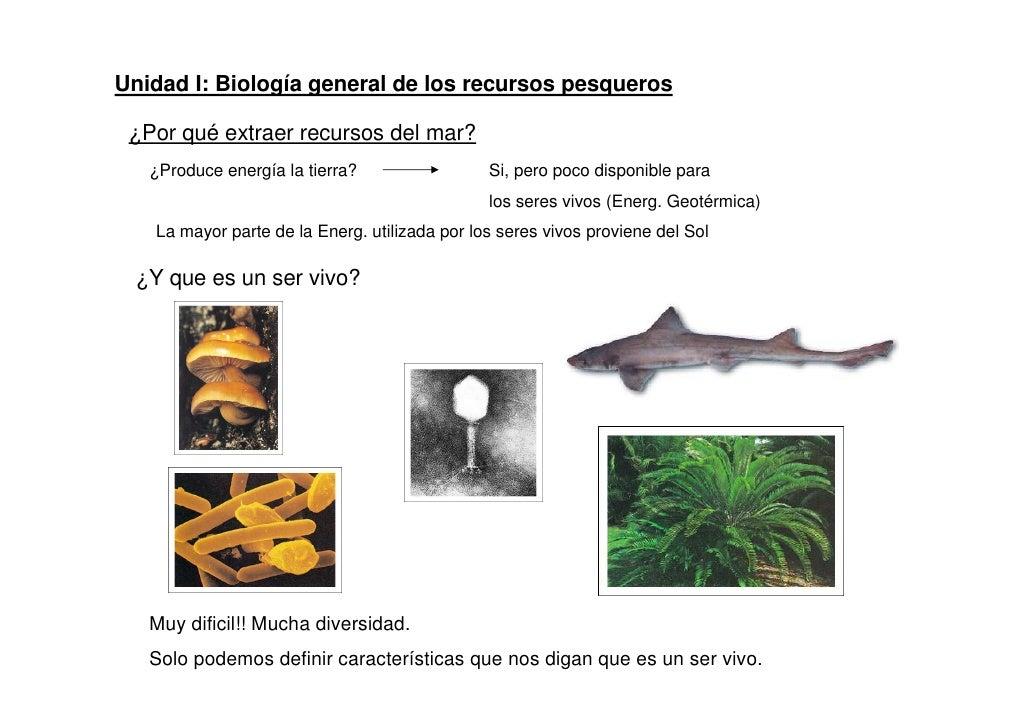 Unidad I: Biología general de los recursos pesqueros ¿Por qué extraer recursos del mar?   ¿Produce energía la tierra?     ...