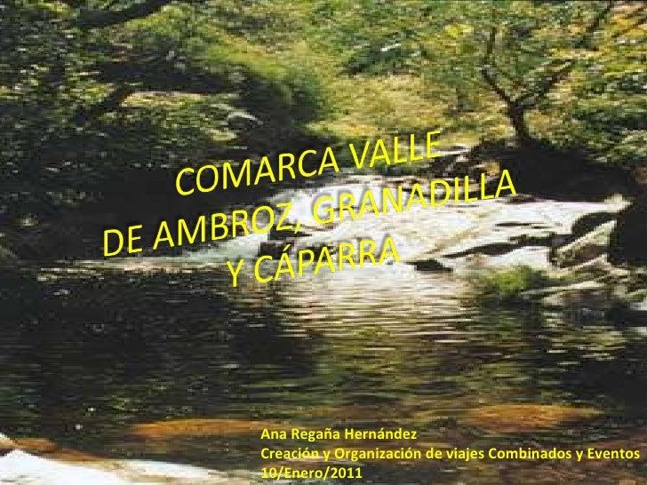 Ana Regaña Hernández Creación y Organización de viajes Combinados y Eventos 10/Enero/2011