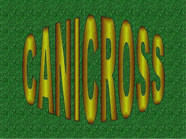 COM VA COMENÇAR El canicross va entrar a Espanya fa aproximadament 10 anys en competicions regulars. És un esport jove que...