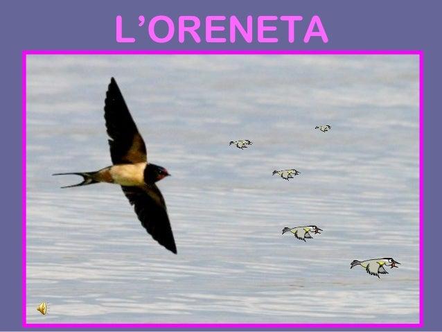 L'ORENETA